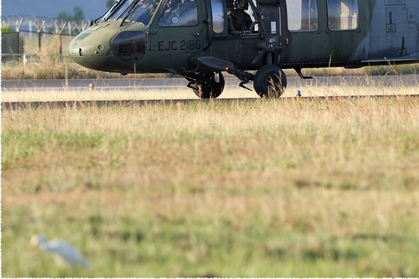 Photo#8611-3-Sikorsky UH-60L Black Hawk