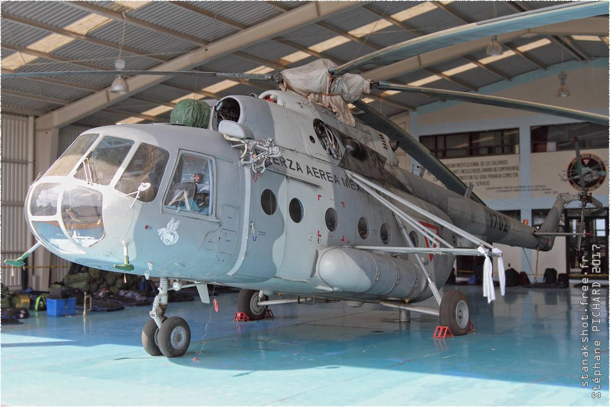 tof#9887_Mi-8_de la Force aérienne mexicaine