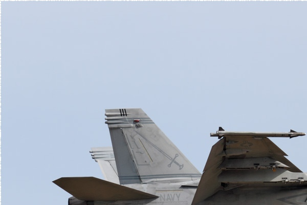 Photo#9100-1-Boeing F/A-18F Super Hornet