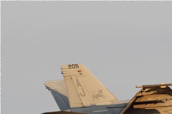Photo#9111-1-Boeing F/A-18F Super Hornet