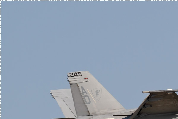 Photo#9121-1-Boeing F/A-18F Super Hornet