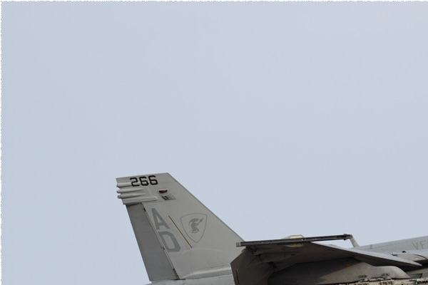 Photo#9128-1-Boeing F/A-18F Super Hornet