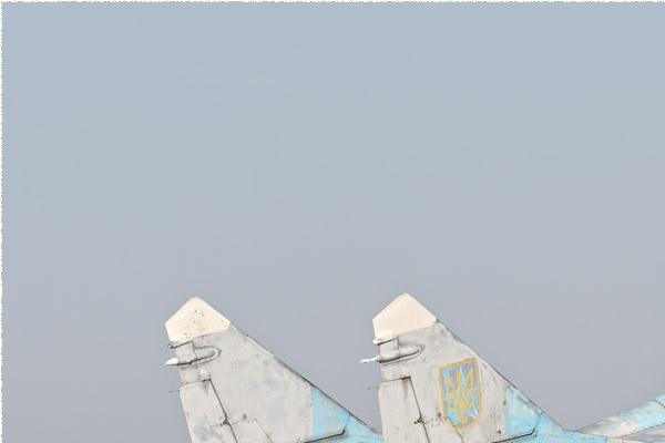 Photo#9686-1-Mikoyan-Gurevich MiG-29UB