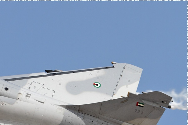 Photo#9019-2-Dassault Mirage 2000-9