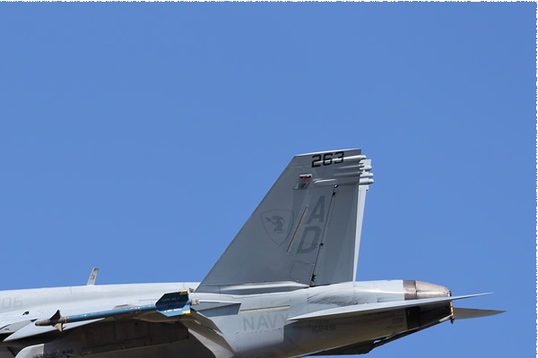 Photo#9126-2-Boeing F/A-18F Super Hornet