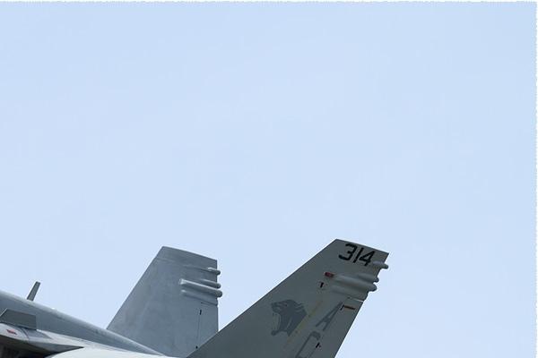 Photo#9142-2-McDonnell Douglas F/A-18C Hornet