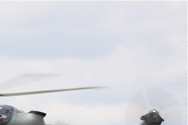 Photo#9530-2-AgustaWestland Wildcat HMA2