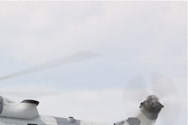 Photo#9531-2-AgustaWestland Wildcat HMA2