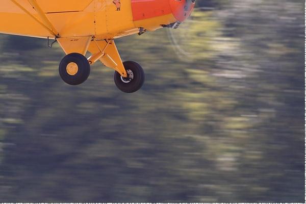 Photo#9561-4-Piper L-18C Super Cub