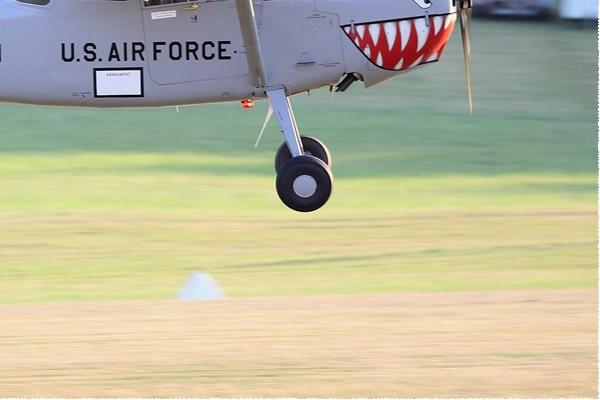 Photo#9563-4-Cessna O-1E Bird Dog