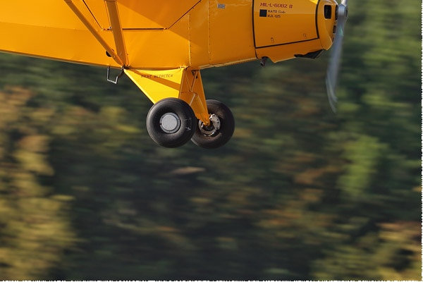 Photo#9564-4-Piper L-18C Super Cub