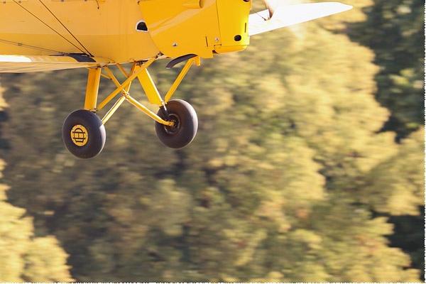 Photo#9566-4-De Havilland DH.82A Tiger Moth II
