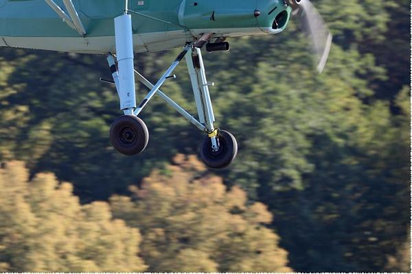 Photo#9589-4-Fieseler Fi 156C-3 Storch