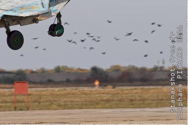Photo#9686-4-Mikoyan-Gurevich MiG-29UB