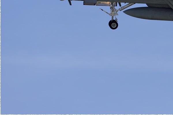 Photo#9116-3-Boeing F/A-18F Super Hornet
