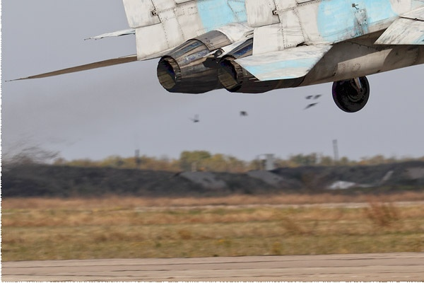 Photo#9686-3-Mikoyan-Gurevich MiG-29UB