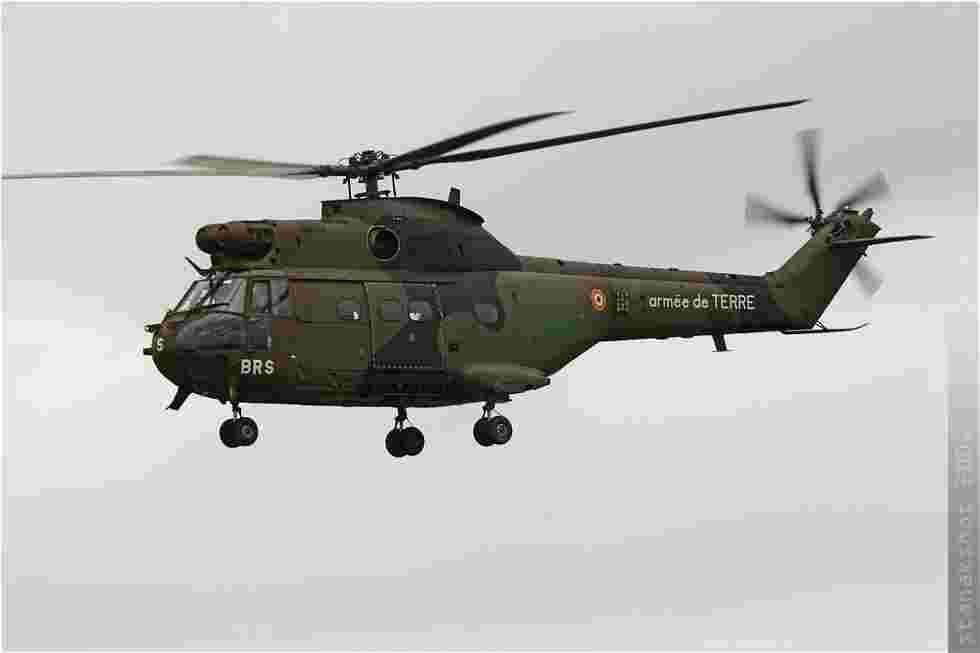 tofcomp#295-Puma-France-army