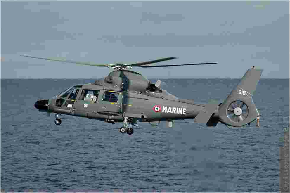 tofcomp#443-Dauphin-France-navy