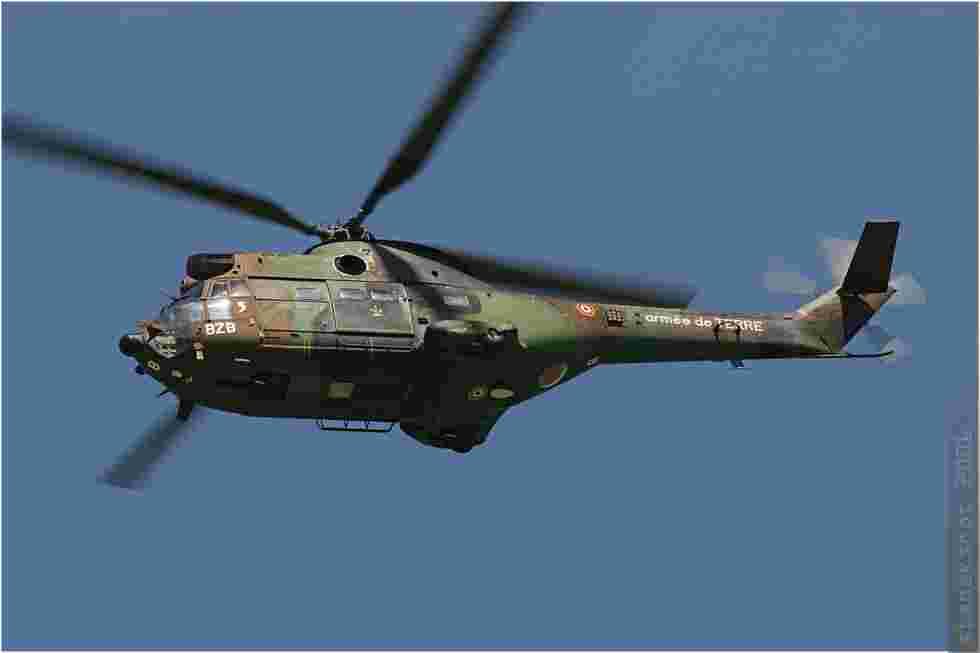 tofcomp#59-Puma-France-army