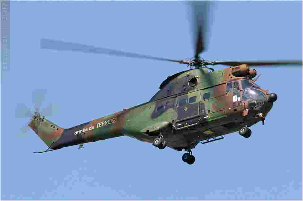 tofcomp#603-Puma-France-army