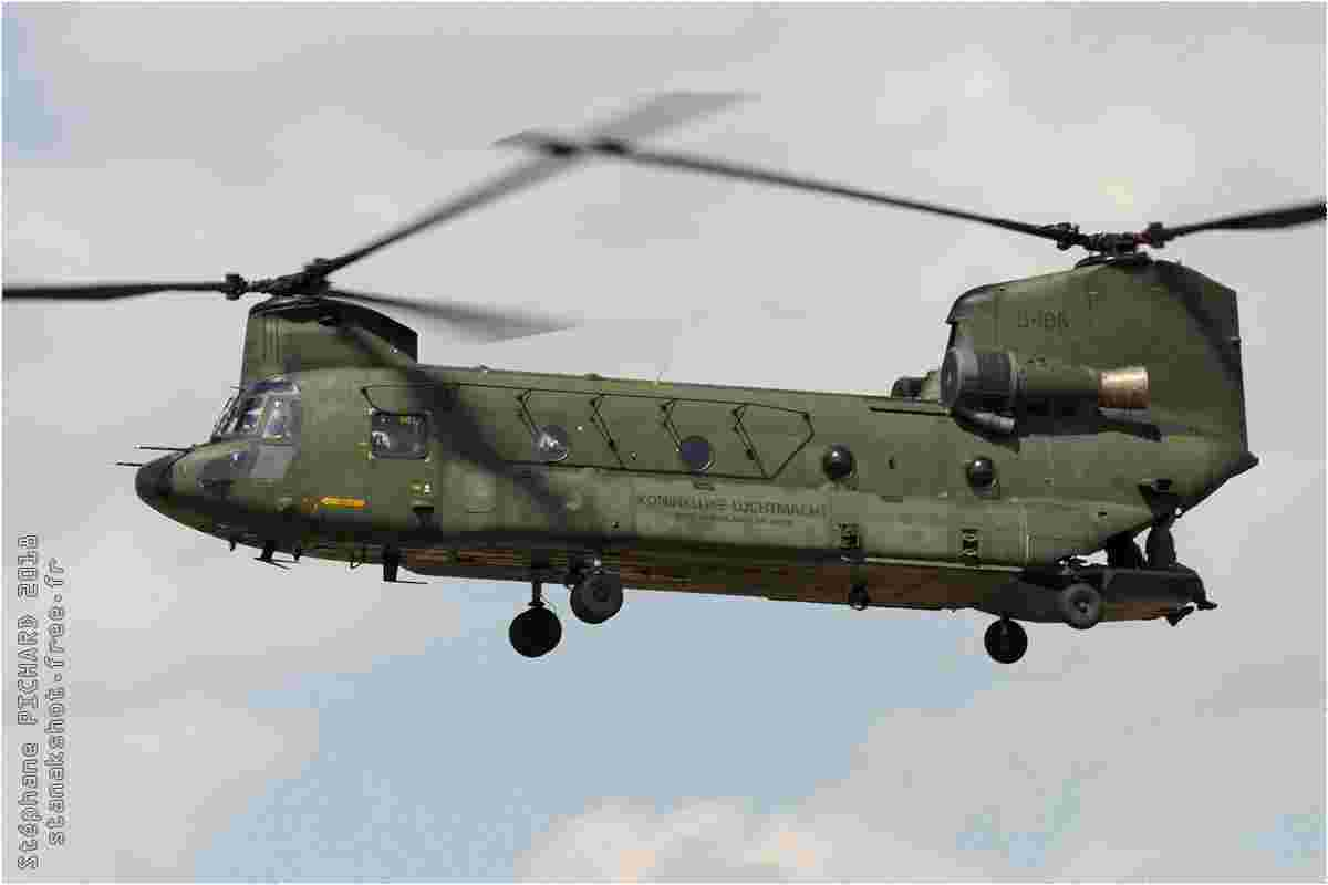 tofcomp#11152-Chinook-Pays-Bas-air-force