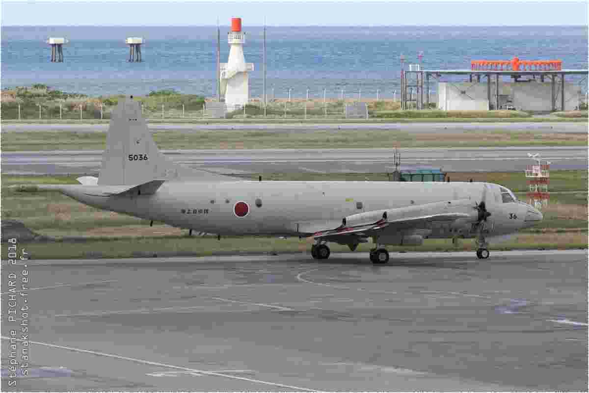 tofcomp#11480-Orion-Japon-navy