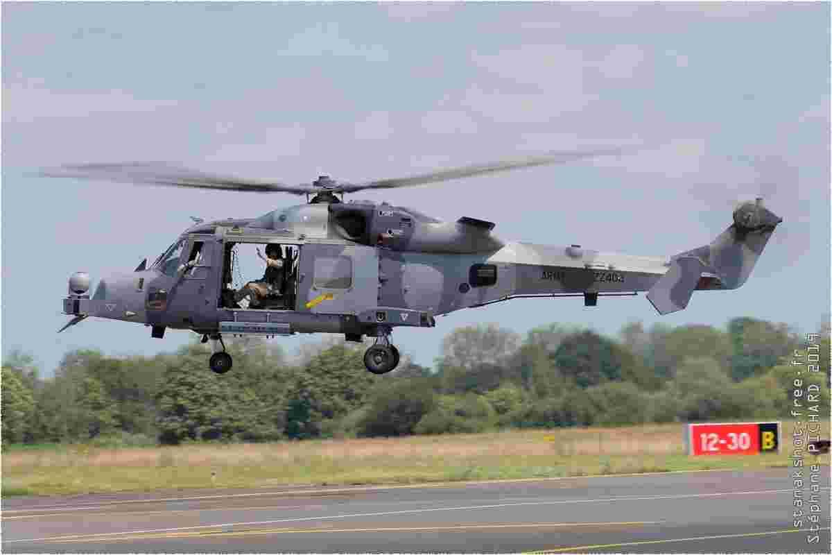 tofcomp#11565-Wildcat-Royaume-Uni-army