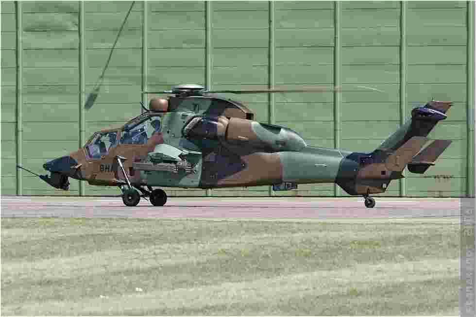 tofcomp#3784-Tigre-France-army