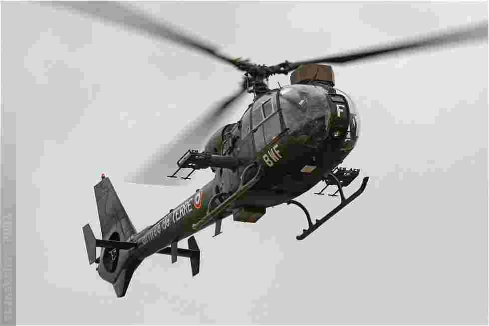 tofcomp#3905-Gazelle-France-army