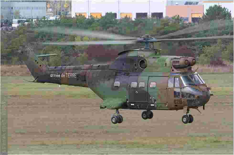 tofcomp#3933-Puma-France-army