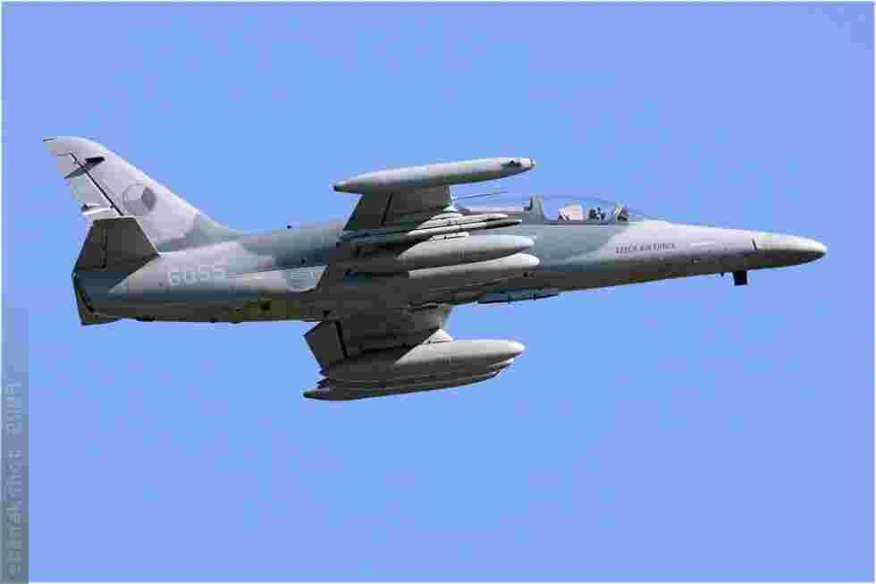 tofcomp#4255-Alca-Tchequie-air-force