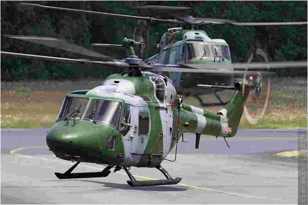 tofcomp#4293-Lynx-Royaume-Uni-army