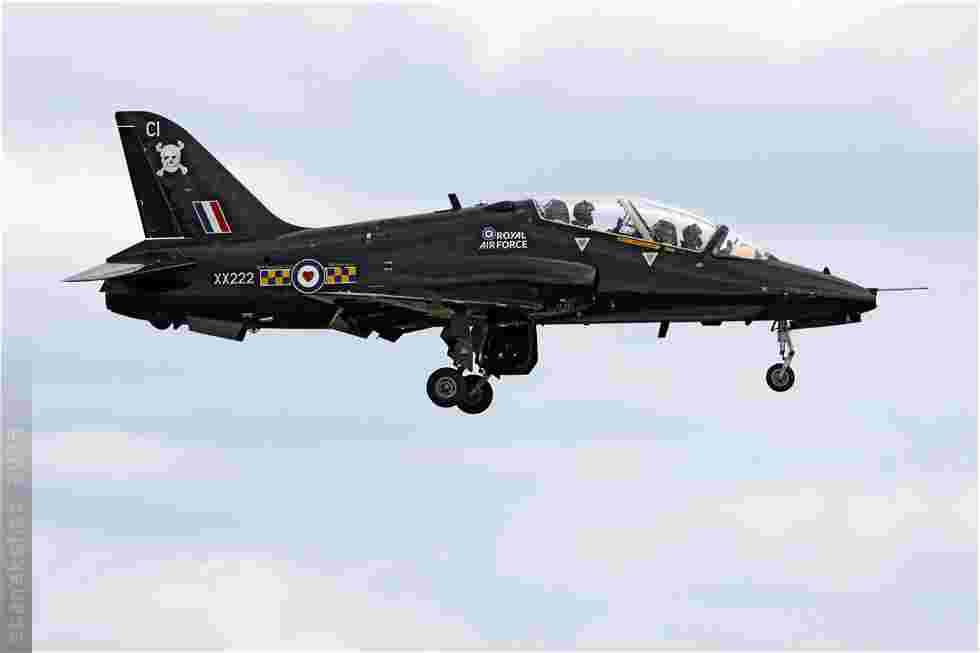 tofcomp#4338-Hawk-Royaume-Uni-air-force
