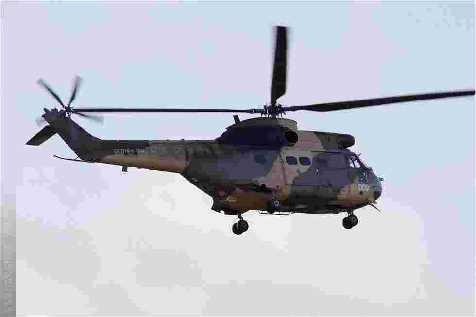 tofcomp#4626-Puma-France-army