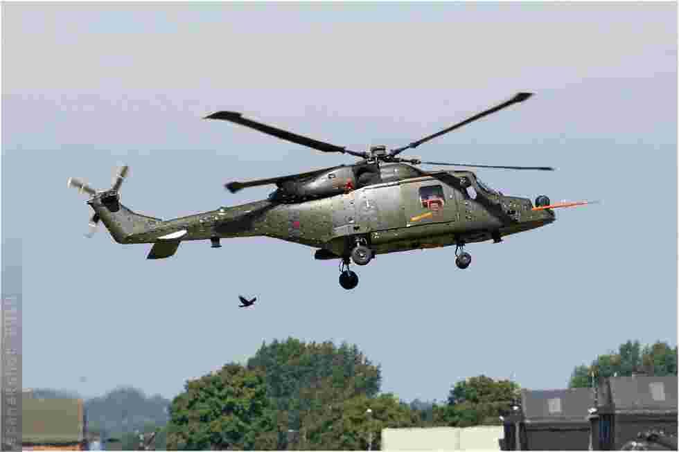 tofcomp#5167-Wildcat-Royaume-Uni-navy