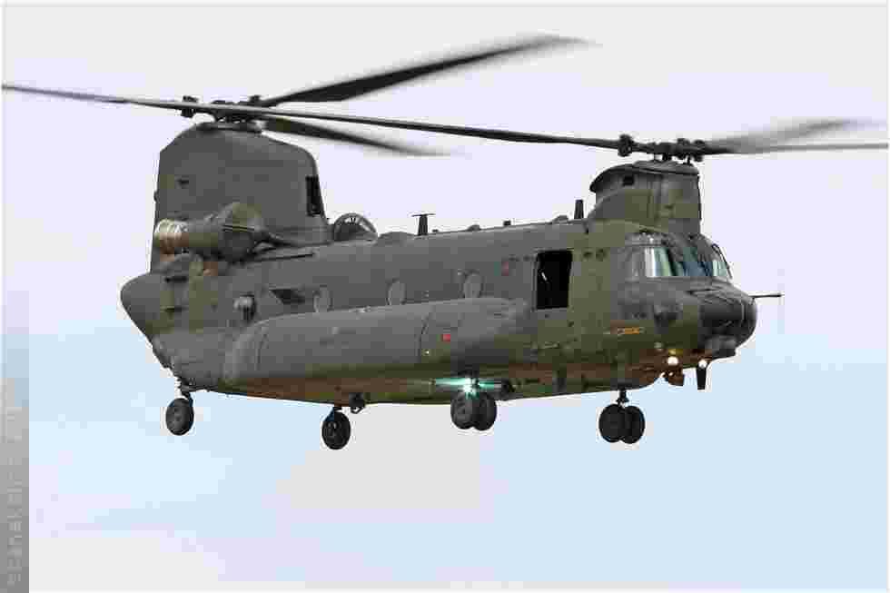 tofcomp#5192-Chinook-Royaume-Uni-air-force