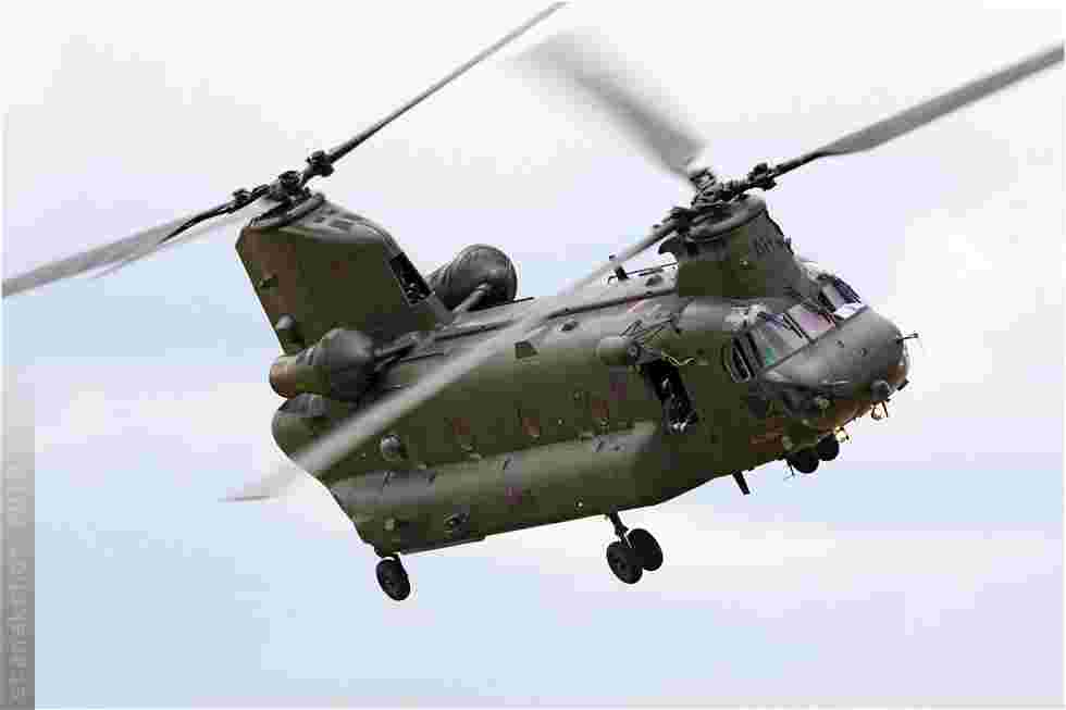 tofcomp#5195-Chinook-Royaume-Uni-air-force