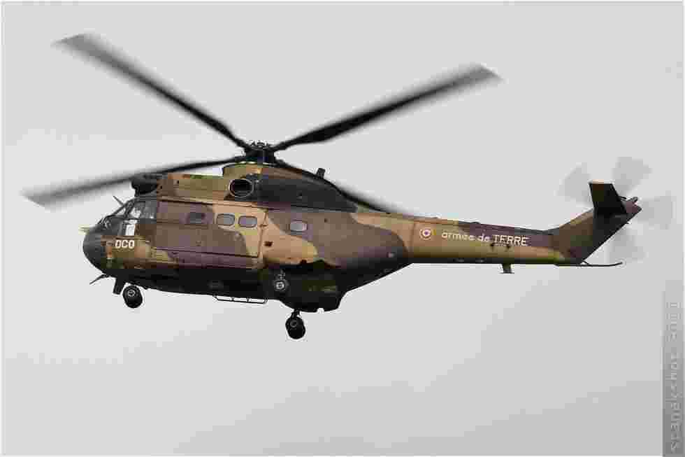 tofcomp#5616-Puma-France-army