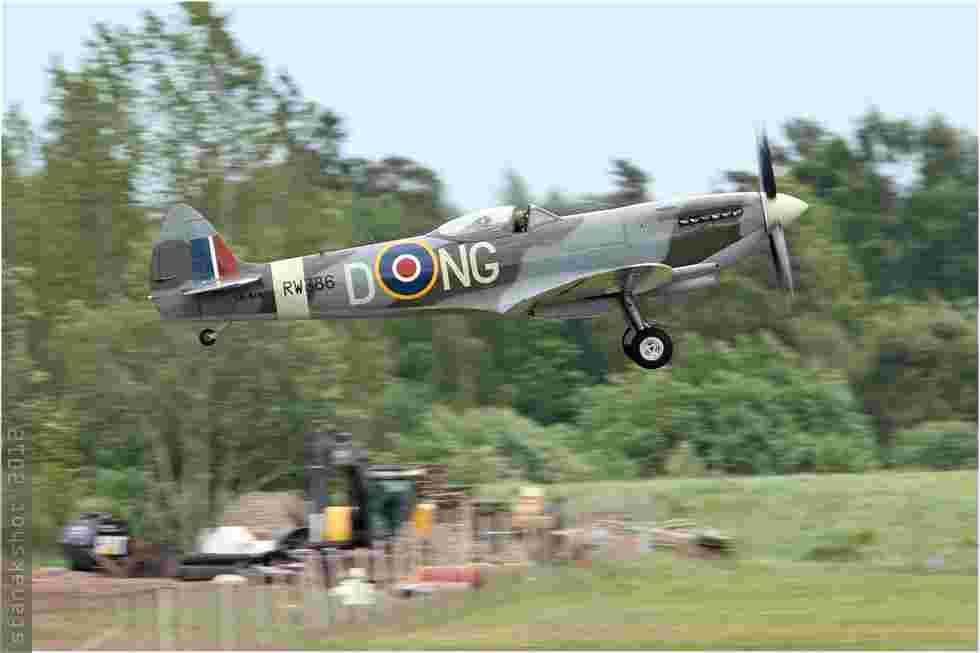 tofcomp#6051-Spitfire-Suede