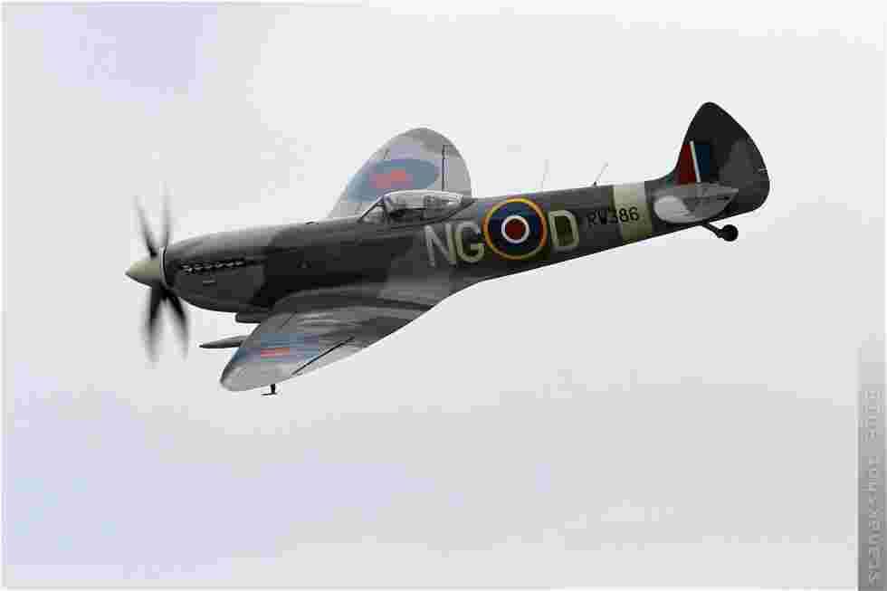 tofcomp#6052-Spitfire-Suede