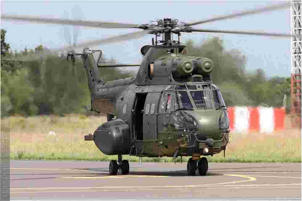 tofcomp#6085-Puma-Royaume-Uni-air-force