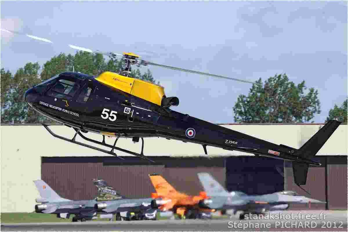 tofcomp#6211-Ecureuil-Royaume-Uni-air-force