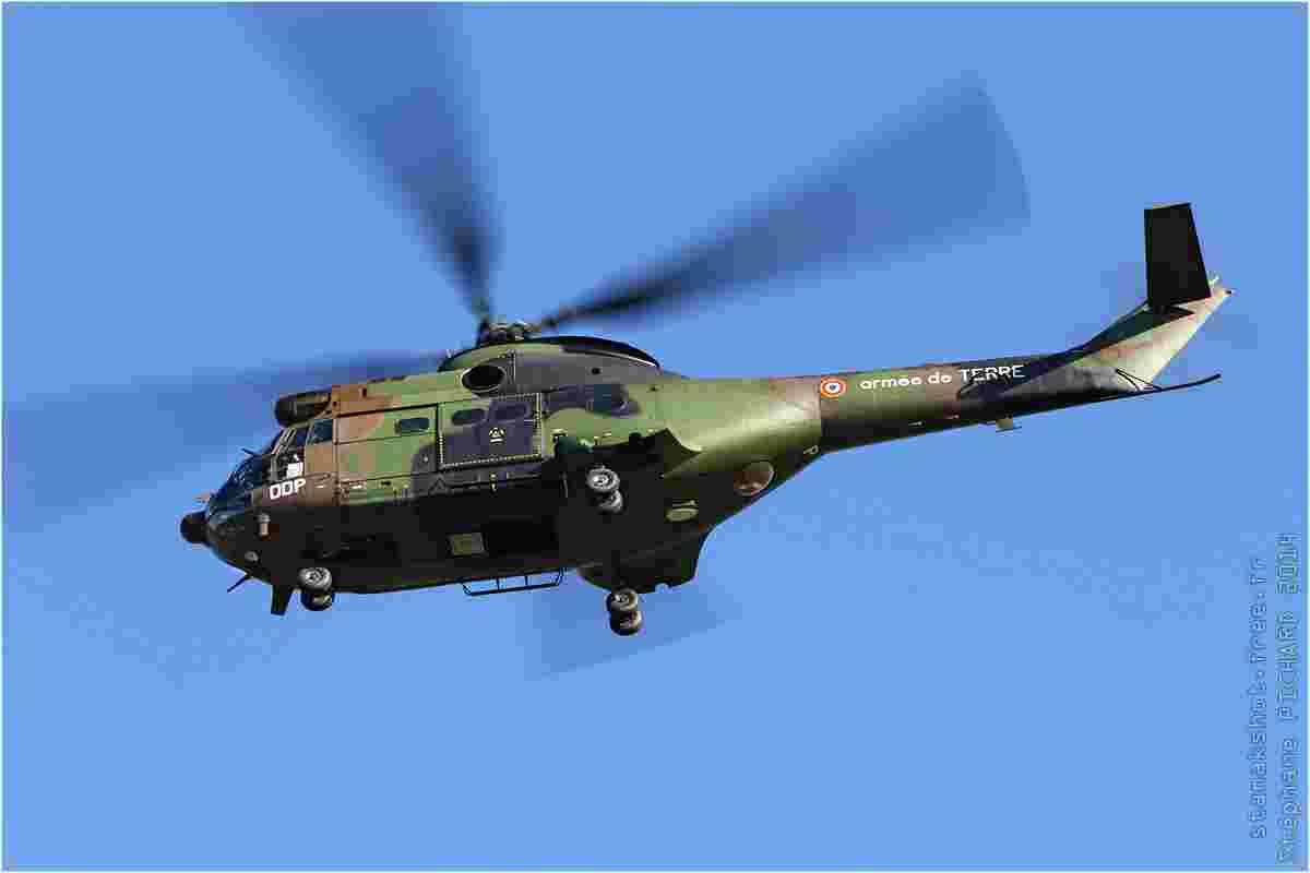 tofcomp#7366-Puma-France-army