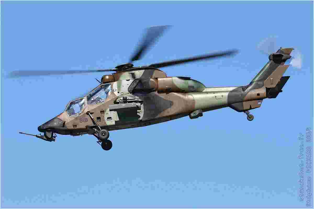tofcomp#7368-Tigre-France-army