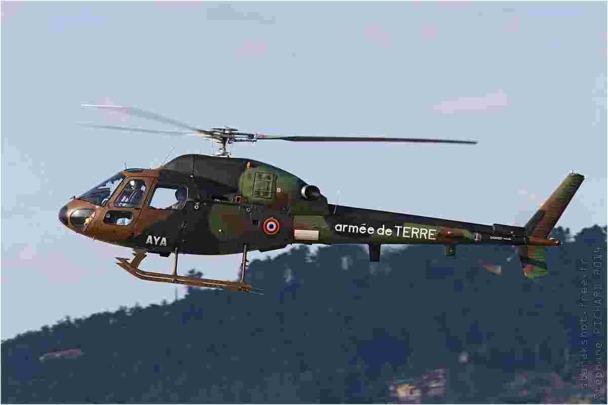 tofcomp#7371-Ecureuil-France-army