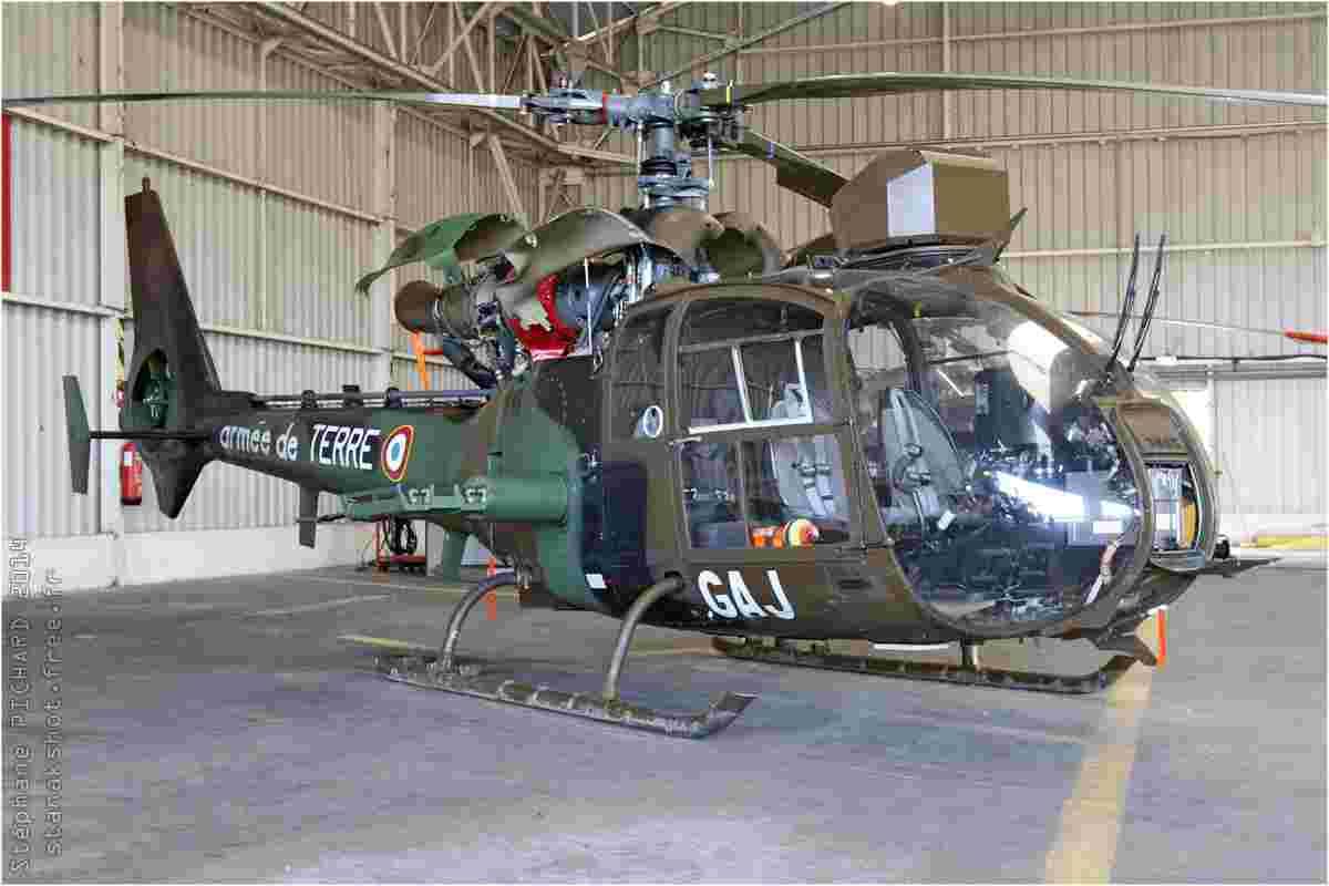 tofcomp#7375-Gazelle-France-army