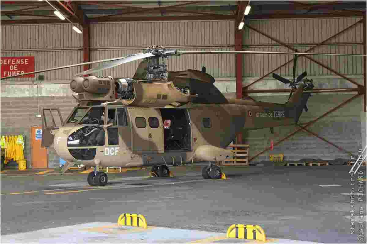 tofcomp#7393-Puma-France-army