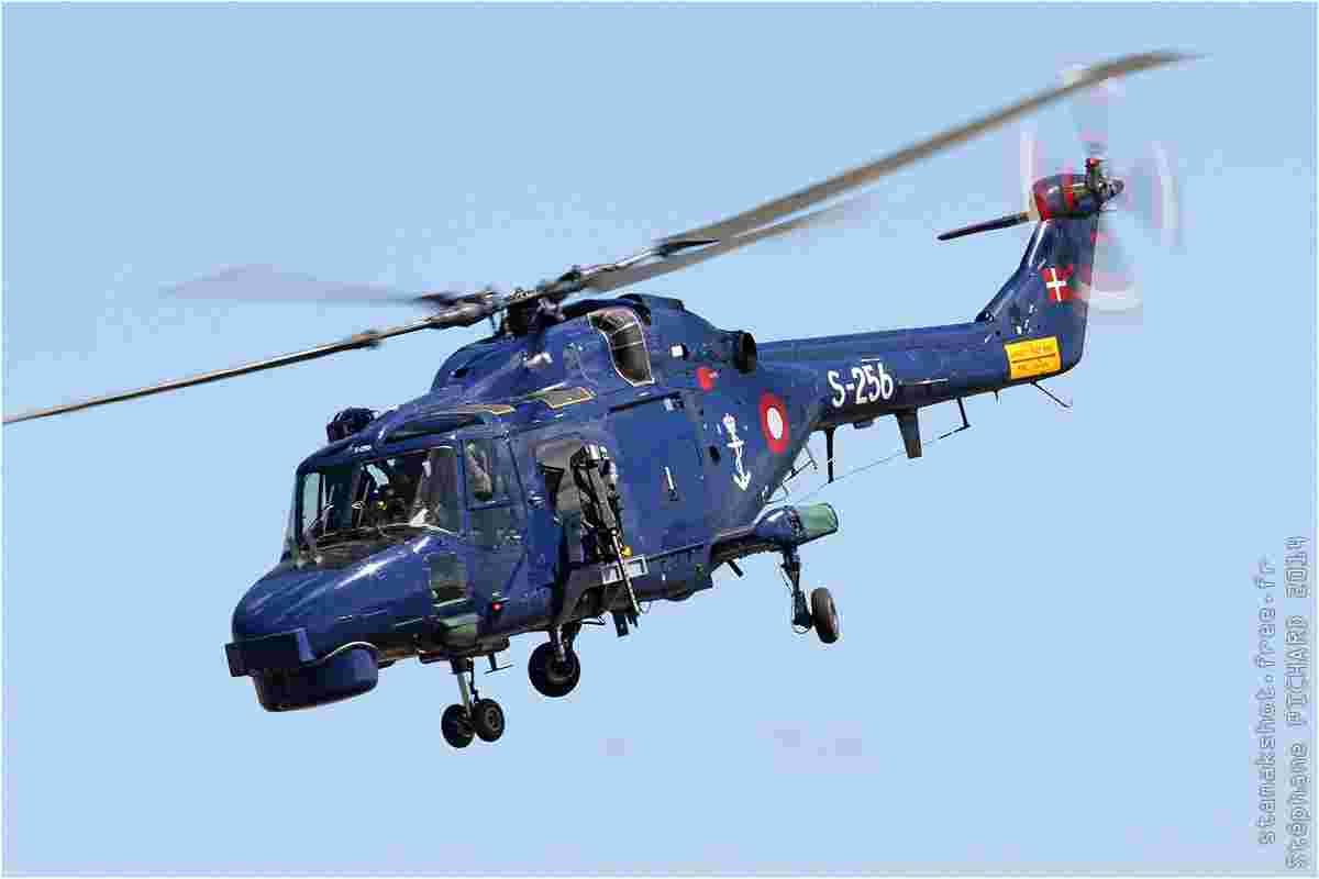 tofcomp#7789-Lynx-Danemark-navy
