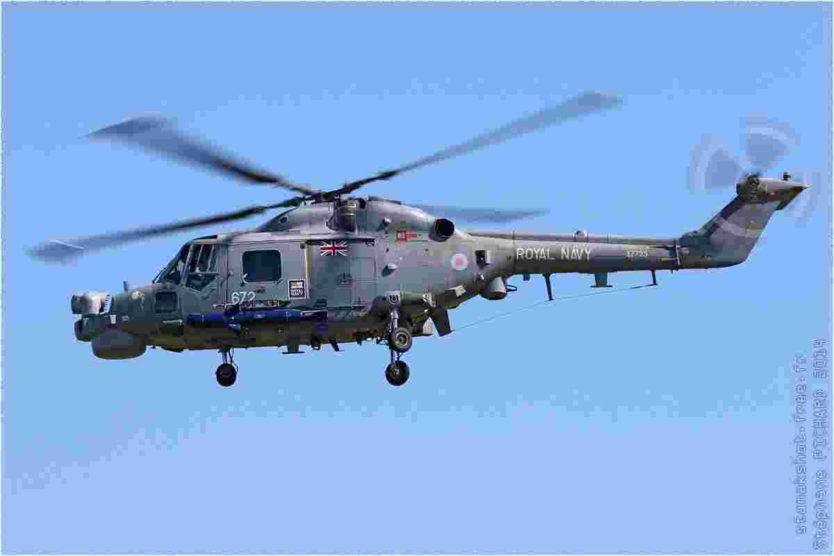 tofcomp#7886-Lynx-Royaume-Uni-navy