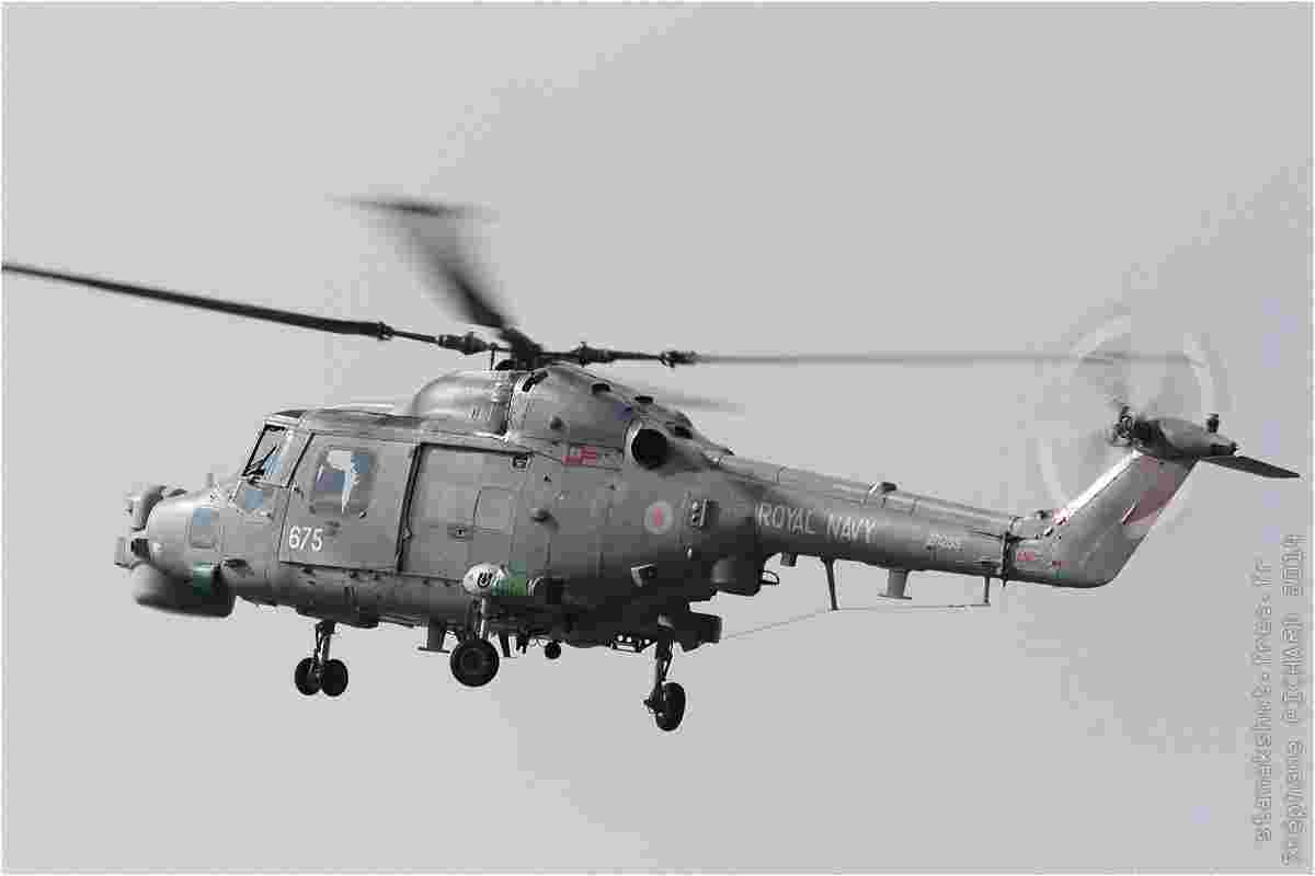tofcomp#7981-Lynx-Royaume-Uni-navy